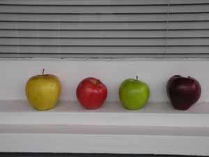 apples on a windowsill